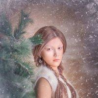 В преддверии Рождества :: Евгения Малютина