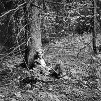 Отдых в лесу :: Валерий Талашов