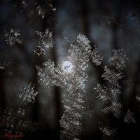 Ночь... :: Viktor Nogovitsin