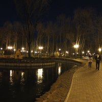Ночной пруд :: Наталья Тимошенко