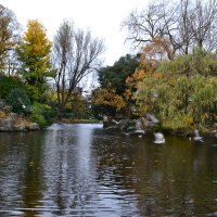 Парк с прудом. :: zoja