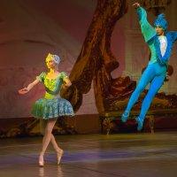 Я хочу на балет... :: Владимир Максимов