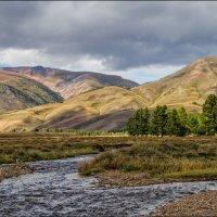 реки Курайской степи... :: Наталья Маркова