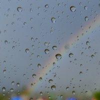 После дождя! :: Наталья Стриженко