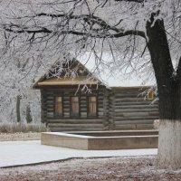 У леса на опушке жила зима в избушке :: Ната Волга