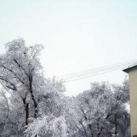 зима :: Дмитрий Потапкин