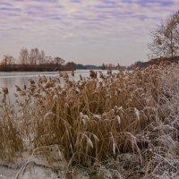 Ноябрьское утро на реке-2. :: Виктор Евстратов