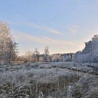 Мороз и солнце :: Мария Богуславская