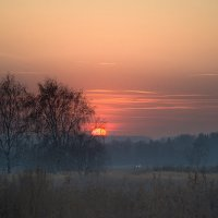 Закат.  23.11.2014г. :: Роман Полианчик