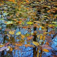 Осеннее зеркало :: Петр Заровнев