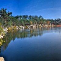 Лесное озеро :: Андрей Зелёный