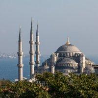 Стамбул. Голубая мечеть :: Алёна Соколова