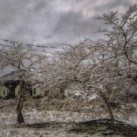Был пасмурный ноябрьский вечер... :: Светлана Лиханова
