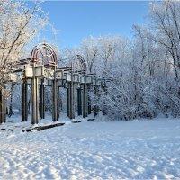 В парке. :: Николай Емелин