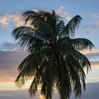 Карибские закаты. :: Evgeniy Kalinin