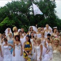 На параде невест. Финал :: Нина Корешкова