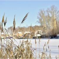 На дачу зимой :: Дмитрий Конев