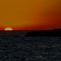 Закат на Персидском заливе :: Семен Кактус