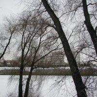 Мой горд зимой :: раиса Орловская