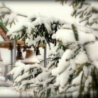 Первый снег :: Геннадий Храмцов