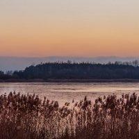 Первый лёд на Шумилинском озере. :: Анатолий Клепешнёв
