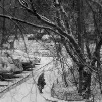 ..первый снег... :: Влада Ветрова