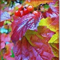Акварельная осень :: Лидия (naum.lidiya)