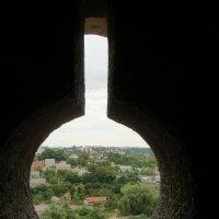 Вид из замка на город. Каменец-Подольский :: Яна Михайловна