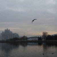 Грустный ноябрь! :: Ирина Олехнович