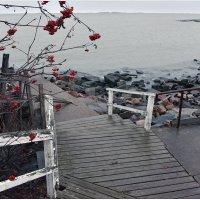 Про рябину,море и ... :: Eino Pessi