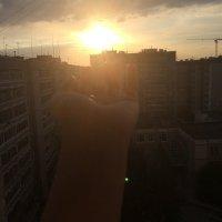 дотянуться до солнца :: Elena Pashkova