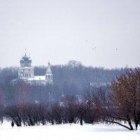 Коломенское зимой :: Владимир Болдырев