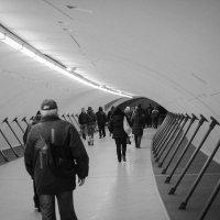 ...а тоннели выводят на свет... :: Елена Миронова