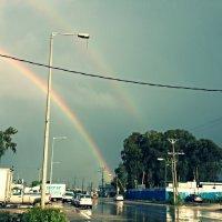 радуга после дождя... :: Александра Шевченко