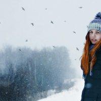 Зима :: Илья Попов