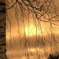 Как удивительны закаты :: Натали V