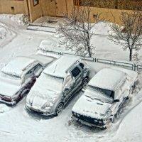 Три девицы под окном... :: Галина Кучерина