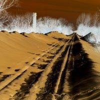 Путь в никуда. :: Дмитрий Арсеньев
