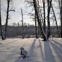 Мороз и солнце :: Владимир Яковлев