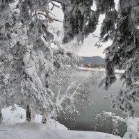 Зимняя сказка :: Владимир Яковлев
