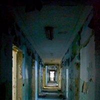 Свет в конце тонеля :: Anna Petry