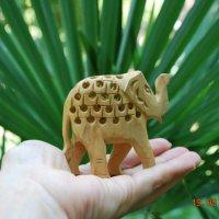 Слон :: Маргарита Пономарева