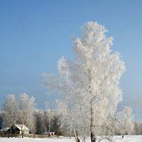 Морозное сельское утро! :: Димарик Лакман
