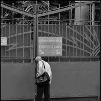 Ворота :: DR photopehota