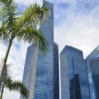Сингапур :: Катерина Марченко