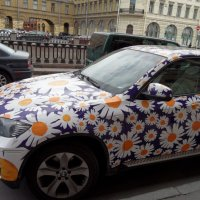 Хочу такую, только ромашки на зеленом фоне)) :: Анна Романова
