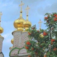 Золотые купола :: Svetlana Sneg