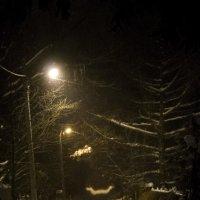 Ночь, улица.... :: Людмила Синицына