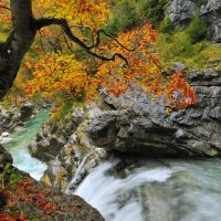 Александр Константинов - Осень в ущелье :: Фотоконкурс Epson