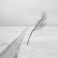 Ирина Лепихина - Вехи из серии Безмолвие :: Фотоконкурс Epson